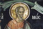 ამოს წინასწარმეტყველი -  საღვთო მოშურნეობით გაძლიერებულ მწყემსს უფალმა საწინასწარმეტყველო მსახურებისათვის მოუწოდა