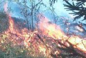 ბოლო ინფორმაცია ბორჯომ-ბაკურიანის ეპარქიიდან - ცეცხლი ყვიბისისკენაც ვრცელდება