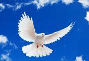 სულიწმინდის გარდამოსვლა